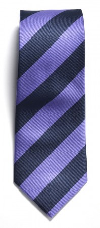 The regimental stripe Navy/purple